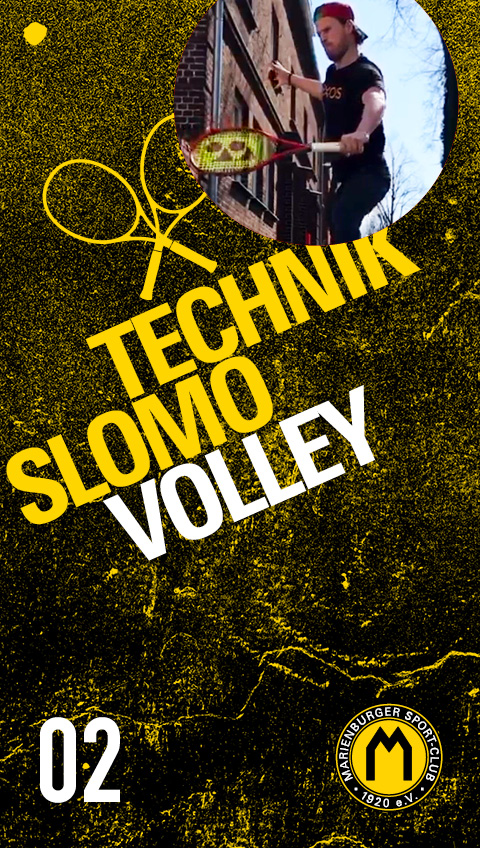 02 Technik Slomo Volley